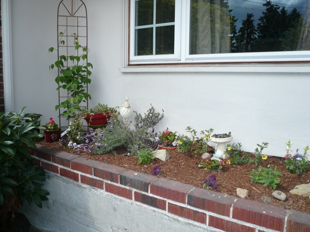 Garden 2010 – now with 100% more garden!